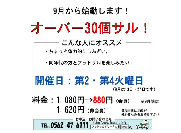 オーバー30元