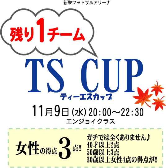ts2016-11